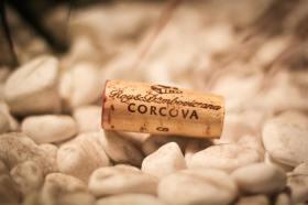 Corcova7